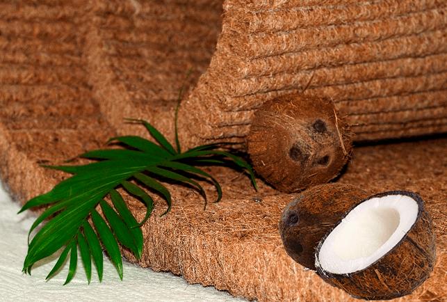 Латексированный кокос